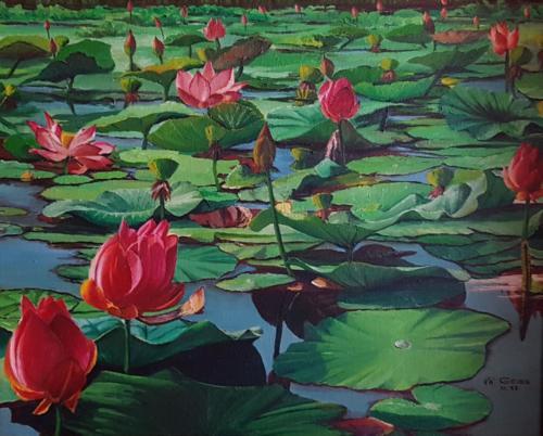 Rote Seerosen in einem Teich - See