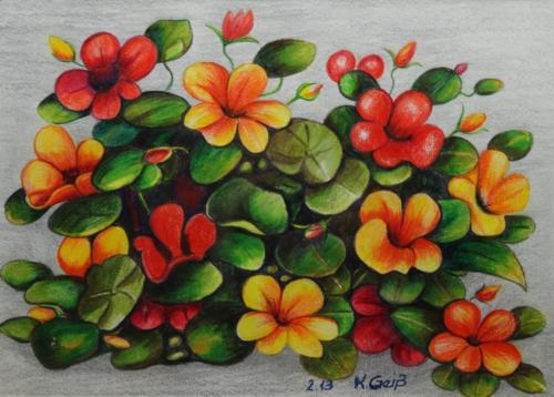 orange und rote Blumen