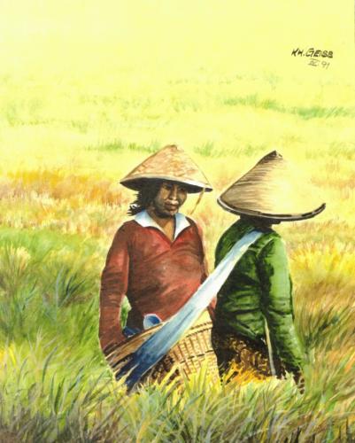 2 Asiatinnen bei der Reisernte