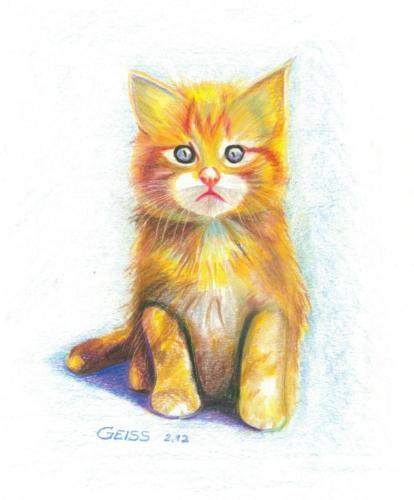 süße rote Katze