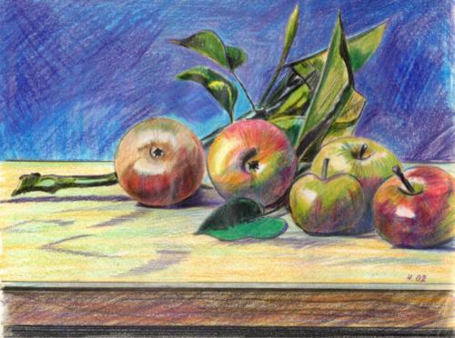 Äpfel - Stilleben