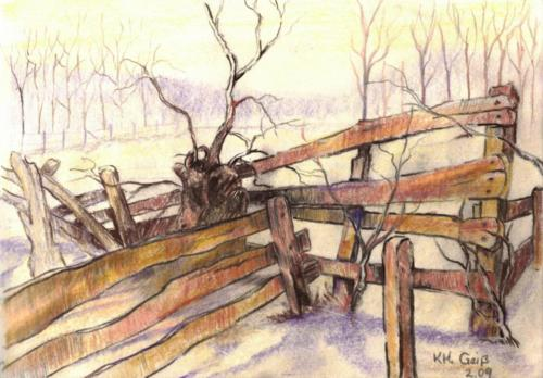 Weidenbaum mit Zaun