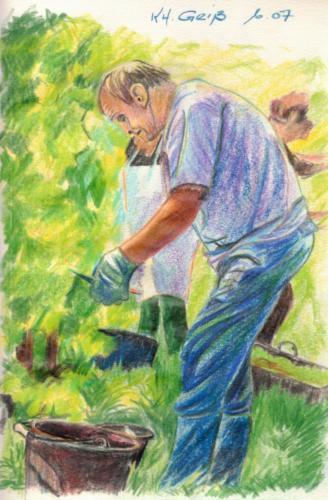 Winzer in den Weinbergen