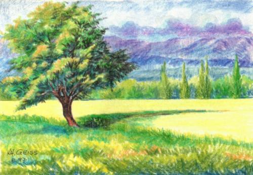 Wiese und Berge