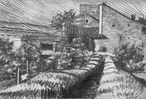 Französischer Bauerngarten