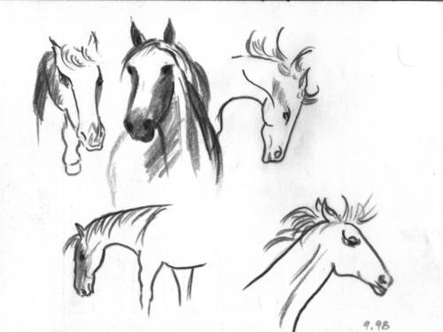 Zeichnung SW Pferde